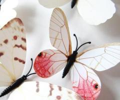 Set de 12 mariposas stickers imanes de colores blanco violeta rojo verde azul amarillo cafe venta